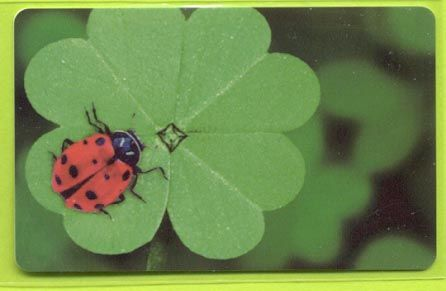 Karstadt - Lady Bug - 2011